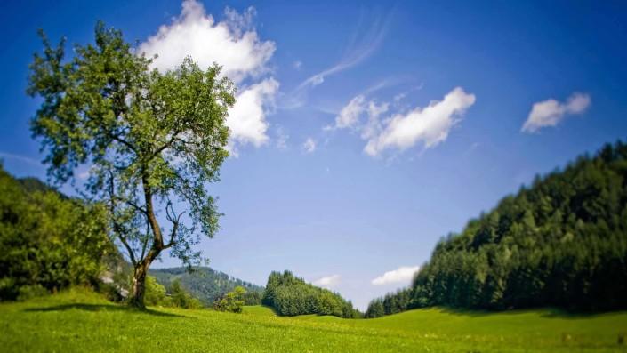 Salzburger Jagdtage am Wolfgangsee